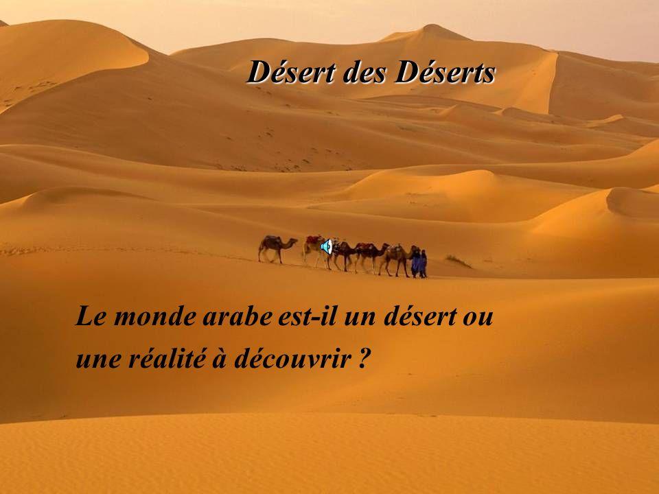 F.MEZYANE.2006 Désert des Déserts Le monde arabe est-il un désert ou une réalité à découvrir ?