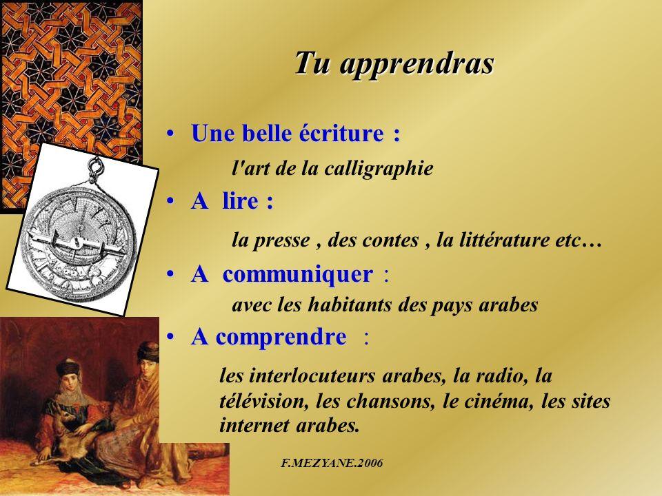 F.MEZYANE.2006 La langue arabe dans lenseignement en France Au collège Larabe peut être choisie comme LV2 à partir de la quatrième Au lycée Larabe peut être choisie comme LV3 en seconde