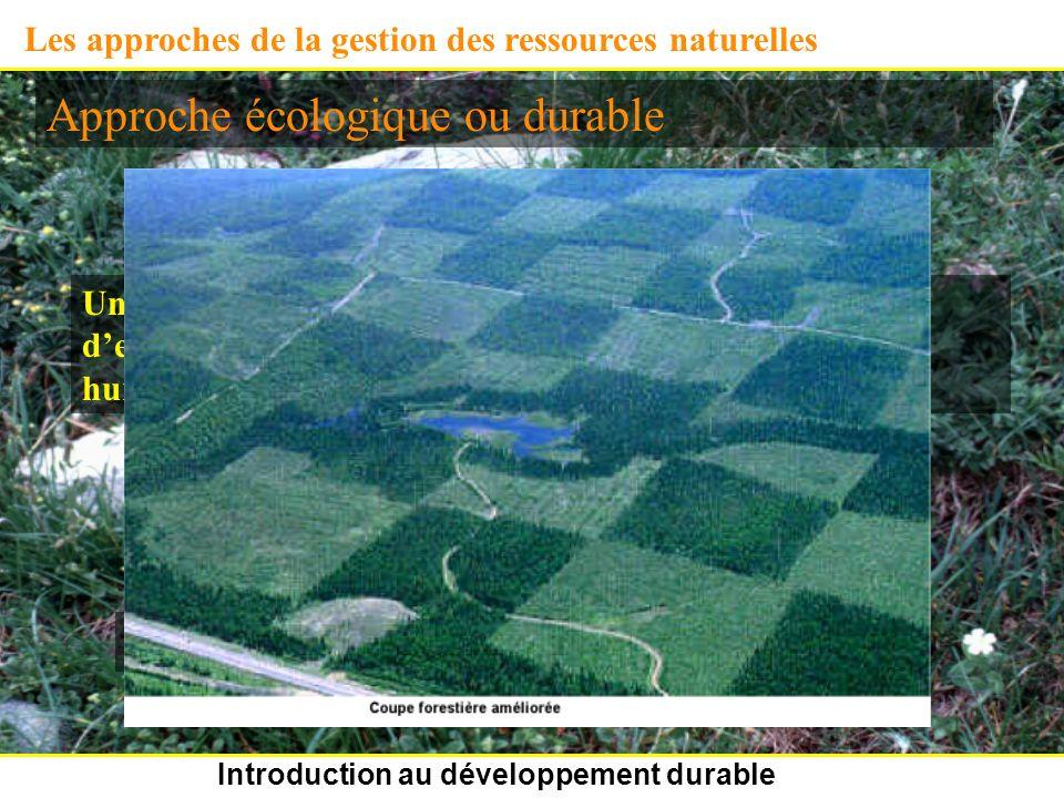 Introduction au développement durable Les approches de la gestion des ressources naturelles Approche écologique ou durable Une ressource donnée doit être exploitée sans provoquer deffets adverses sur lenvironnement biophysique et humain.