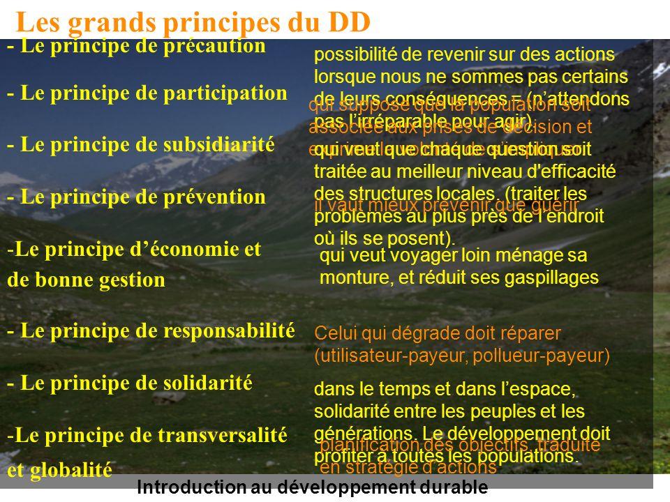 Introduction au développement durable Les grands principes du DD - Le principe de précaution - Le principe de participation - Le principe de subsidiar