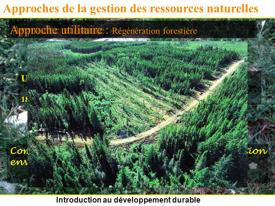 Introduction au développement durable Approches de la gestion des ressources naturelles Approche utilitaire Utilisation prudente des ressources pour que cela dure.