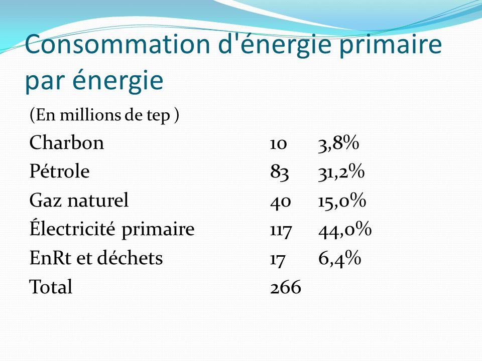 Consommation d énergie finale par secteur (En millions de tep) Sidérurgie53,2% Industrie (hors sidérurgie)2817,9% Résidentiel-tertiaire6944,2% Agriculture 42,6% Transports 5032,1% Total final énergétique 156 Usages non énergétique13 Secteur énergie98 Total266