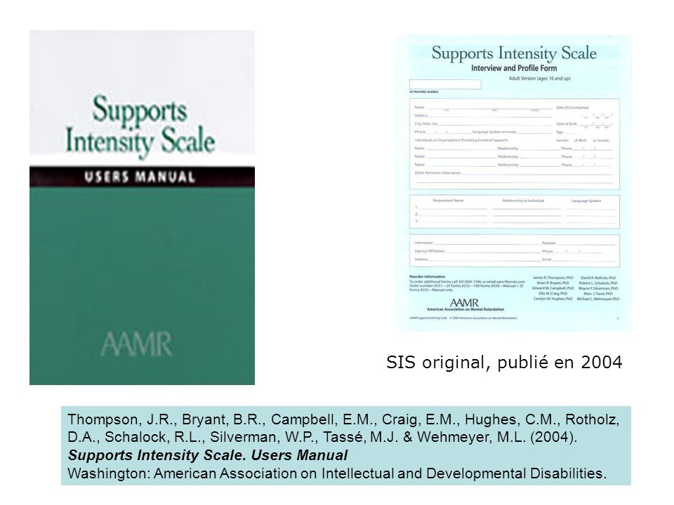 Cinq éléments principaux ayant une influence sur lintensité de soutien 6+1 domaines = sous- échelles 1.Activités de la vie quotidienne 2.Activités communautaires 3.Activités dapprentissage 4.Activités reliées au travail 5.Activités reliées à la santé et à la sécurité 6.Activités sociales 7.Protection et défense des droits Sous-échelle: comportementSous-échelle: soutien médical Éléments concrets dune sous-échelle