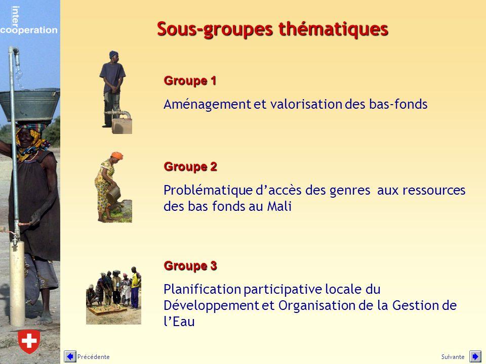 Sous-groupes thématiques Groupe 2 Problématique daccès des genres aux ressources des bas fonds au Mali Groupe 3 Planification participative locale du Développement et Organisation de la Gestion de lEau Groupe 1 Aménagement et valorisation des bas-fonds SuivantePrécédente