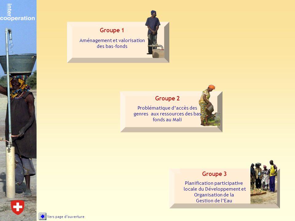 Problématique daccès des genres aux ressources des bas fonds au Mali Groupe 2 Groupe 1 Aménagement et valorisation des bas-fonds Groupe 3 Planificatio