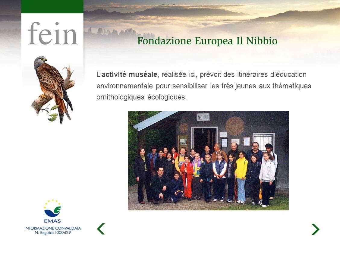 Lactivité muséale, réalisée ici, prévoit des itinéraires déducation environnementale pour sensibiliser les très jeunes aux thématiques ornithologiques écologiques.