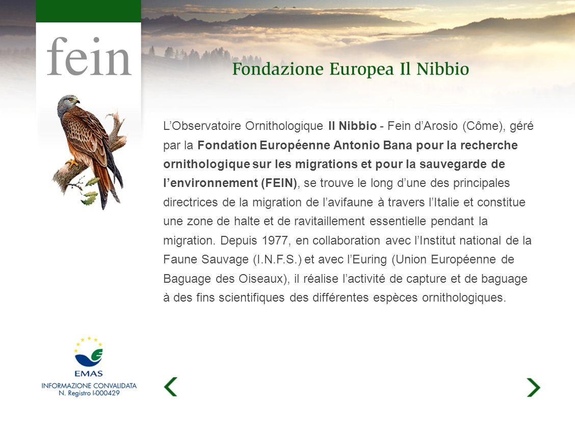 LObservatoire Ornithologique Il Nibbio - Fein dArosio (Côme), géré par la Fondation Européenne Antonio Bana pour la recherche ornithologique sur les migrations et pour la sauvegarde de lenvironnement (FEIN), se trouve le long dune des principales directrices de la migration de lavifaune à travers lItalie et constitue une zone de halte et de ravitaillement essentielle pendant la migration.