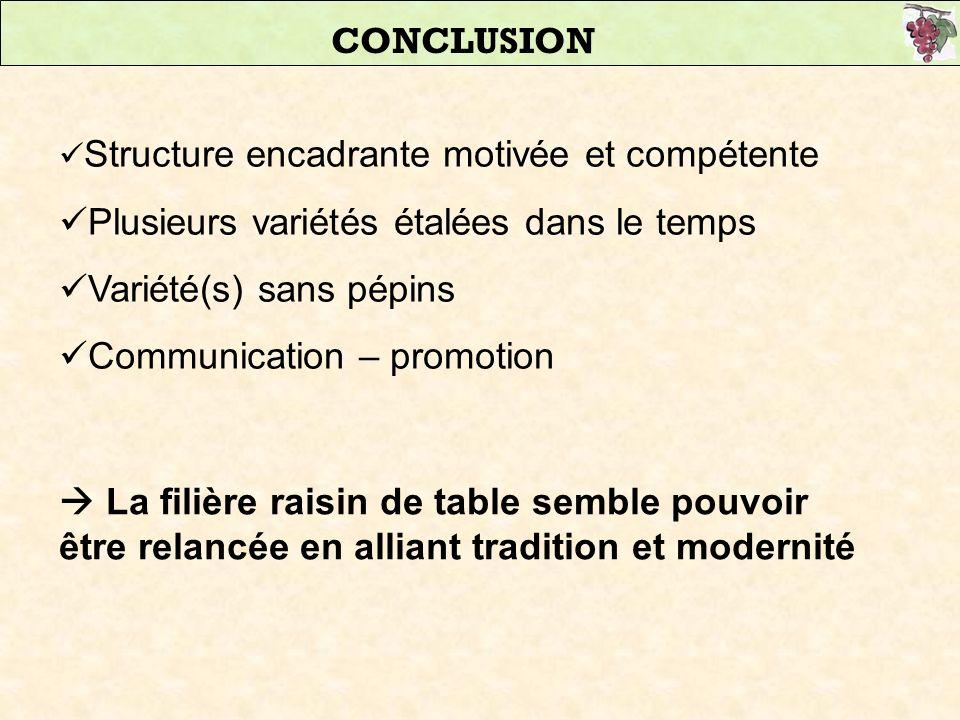 CONCLUSION Structure encadrante motivée et compétente Plusieurs variétés étalées dans le temps Variété(s) sans pépins Communication – promotion La fil