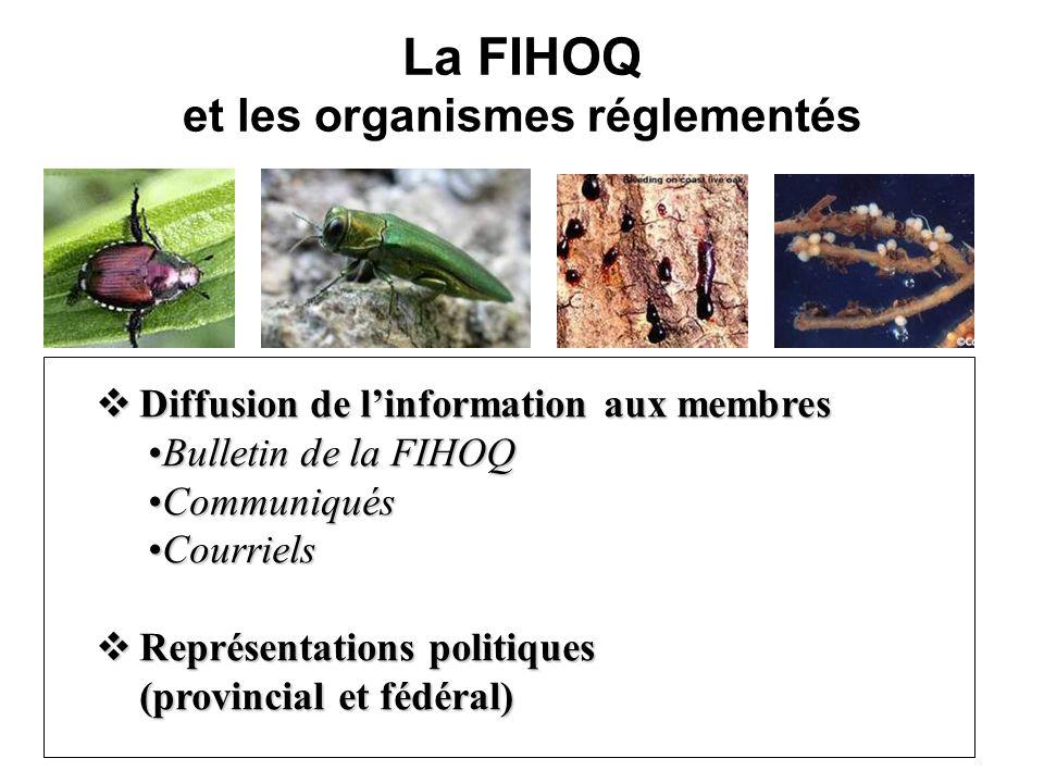 La FIHOQ et les organismes réglementés Diffusion de linformation aux membres Diffusion de linformation aux membres Bulletin de la FIHOQBulletin de la FIHOQ CommuniquésCommuniqués CourrielsCourriels Représentations politiques (provincial et fédéral) Représentations politiques (provincial et fédéral)