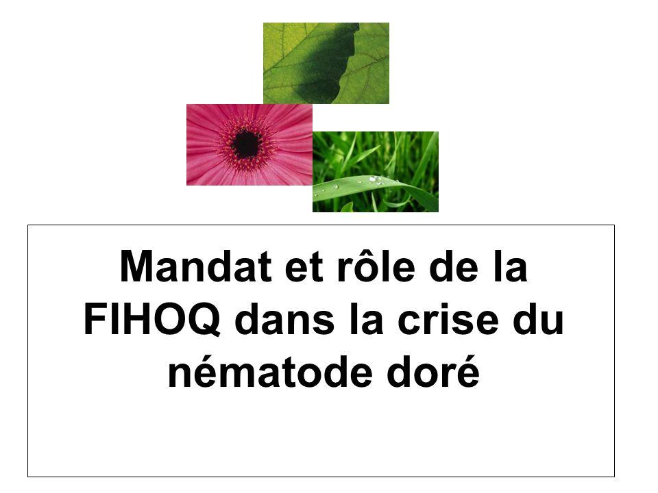 Mandat et rôle de la FIHOQ dans la crise du nématode doré