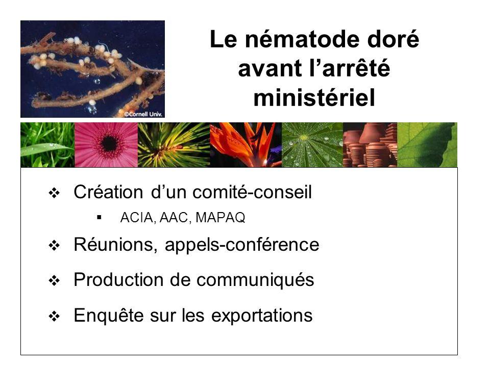 Le nématode doré avant larrêté ministériel Création dun comité-conseil ACIA, AAC, MAPAQ Réunions, appels-conférence Production de communiqués Enquête sur les exportations
