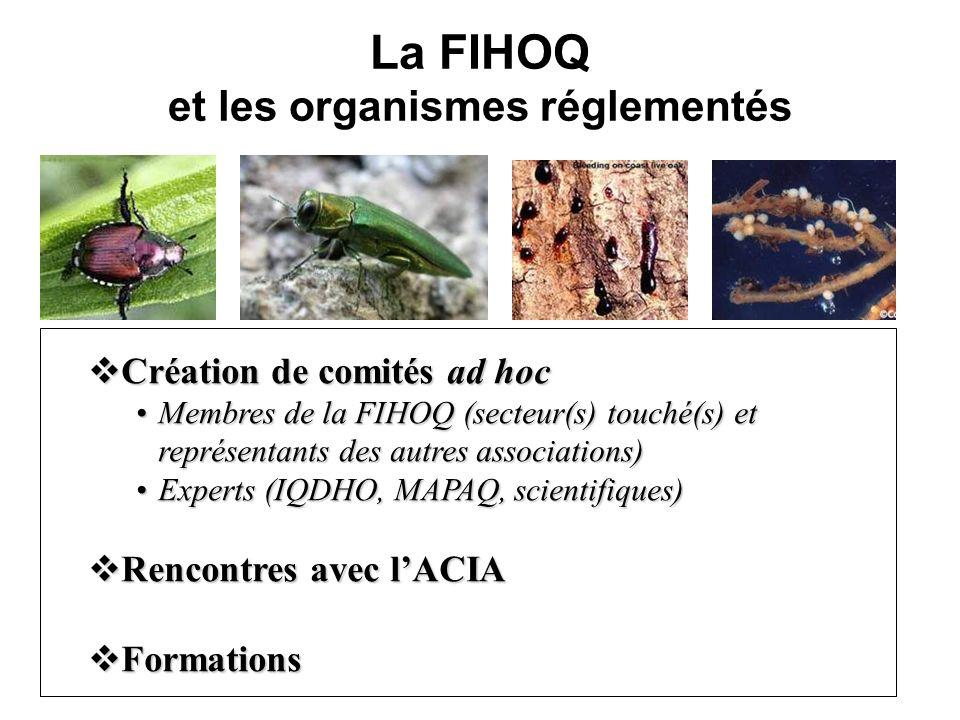 La FIHOQ et les organismes réglementés Création de comités ad hoc Création de comités ad hoc Membres de la FIHOQ (secteur(s) touché(s) et représentants des autres associations)Membres de la FIHOQ (secteur(s) touché(s) et représentants des autres associations) Experts (IQDHO, MAPAQ, scientifiques)Experts (IQDHO, MAPAQ, scientifiques) Rencontres avec lACIA Rencontres avec lACIA Formations Formations
