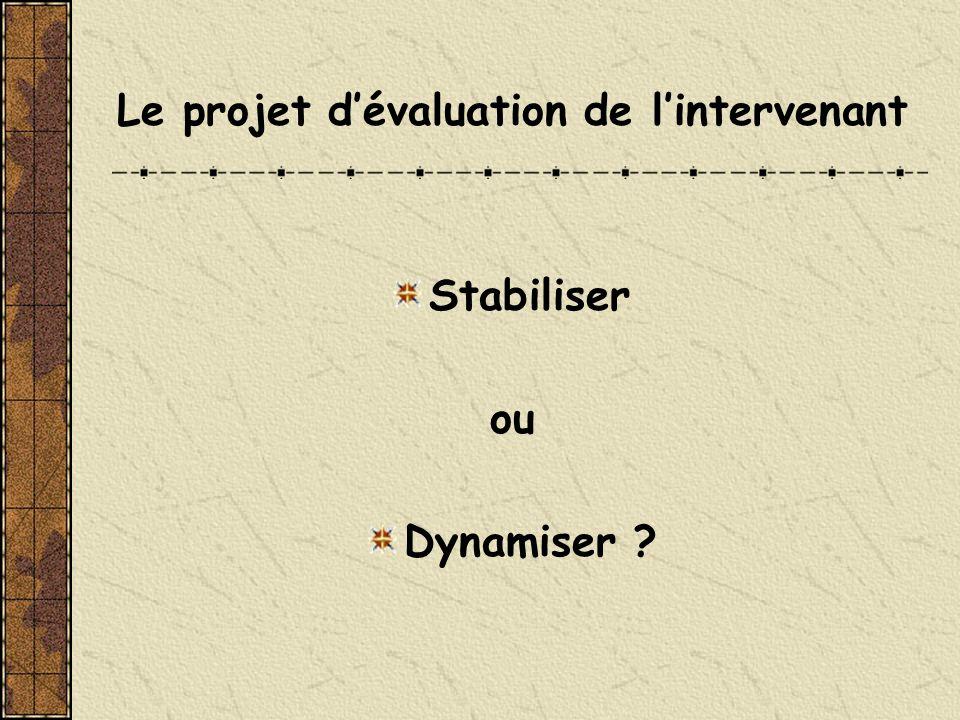Le projet dévaluation de lintervenant Stabiliser ou Dynamiser ?