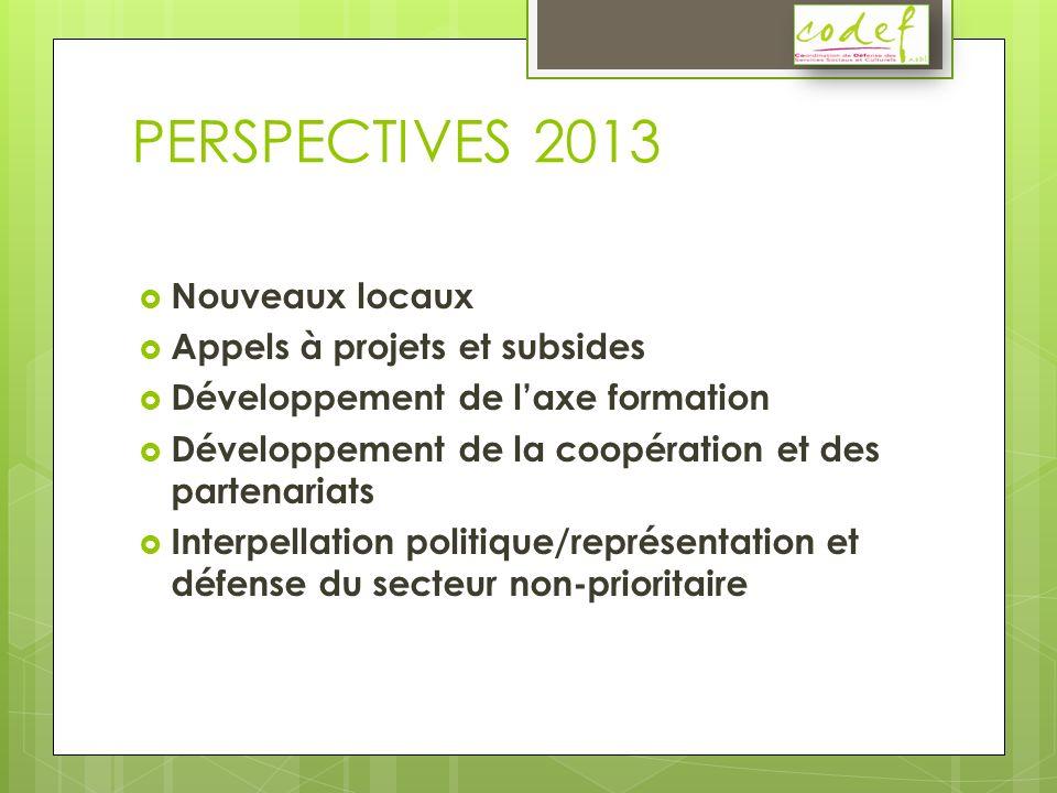 PERSPECTIVES 2013 Nouveaux locaux Appels à projets et subsides Développement de laxe formation Développement de la coopération et des partenariats Interpellation politique/représentation et défense du secteur non-prioritaire