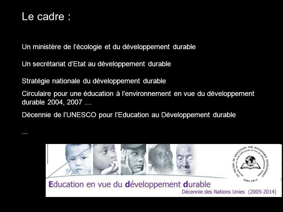 Le cadre : Un ministère de lécologie et du développement durable Un secrétariat dEtat au développement durable Stratégie nationale du développement du