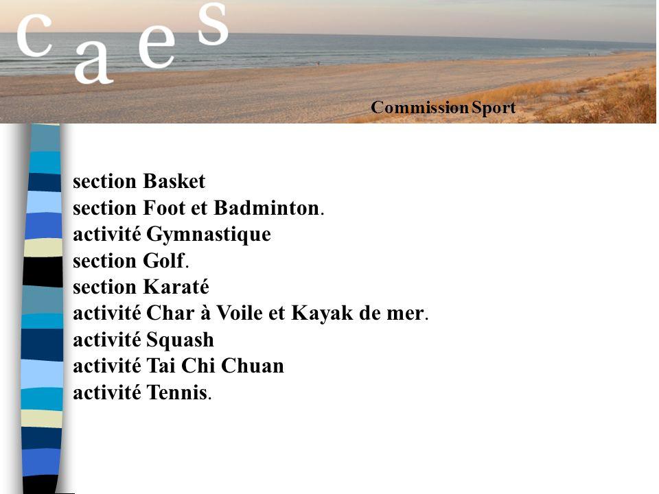 Commission Sport section Basket section Foot et Badminton.