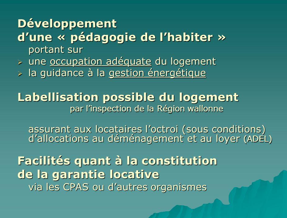 Développement dune « pédagogie de lhabiter » portant sur une occupation adéquate du logement une occupation adéquate du logement la guidance à la gest