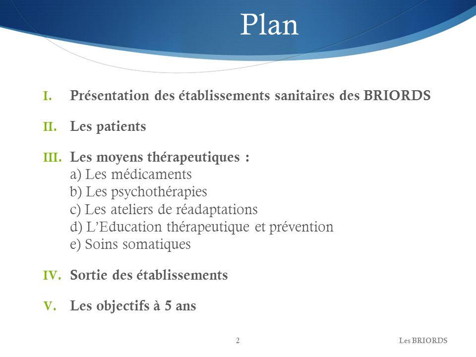 Les BRIORDS2 Plan I. Présentation des établissements sanitaires des BRIORDS II. Les patients III. Les moyens thérapeutiques : a) Les médicaments b) Le