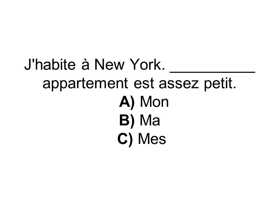 J'habite à New York. __________ appartement est assez petit. A) Mon B) Ma C) Mes