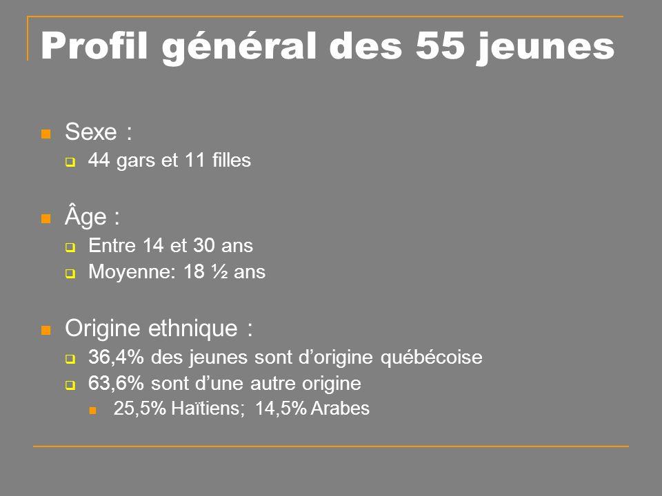 Sexe : 44 gars et 11 filles Âge : Entre 14 et 30 ans Moyenne: 18 ½ ans Origine ethnique : 36,4% des jeunes sont dorigine québécoise 63,6% sont dune autre origine 25,5% Haïtiens; 14,5% Arabes