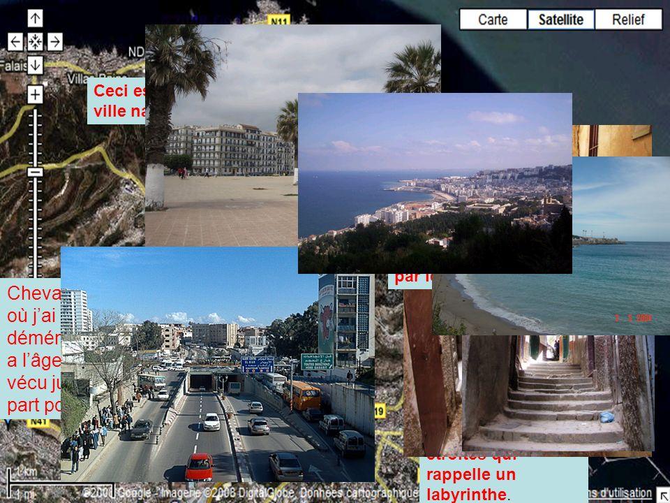 Ceci est une vue de haut de ma ville natale, Alger El Biar est le cartier où Chevalley est le quartier où jai grandi jai déménager a Chevalley a lâge