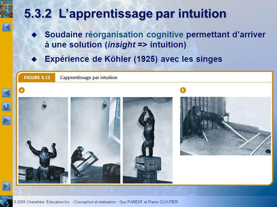 © 2009 Chenelière Éducation Inc. - Conception et réalisation : Guy PARENT et Pierre CLOUTIER 5.3.2Lapprentissage par intuition réorganisation cognitiv