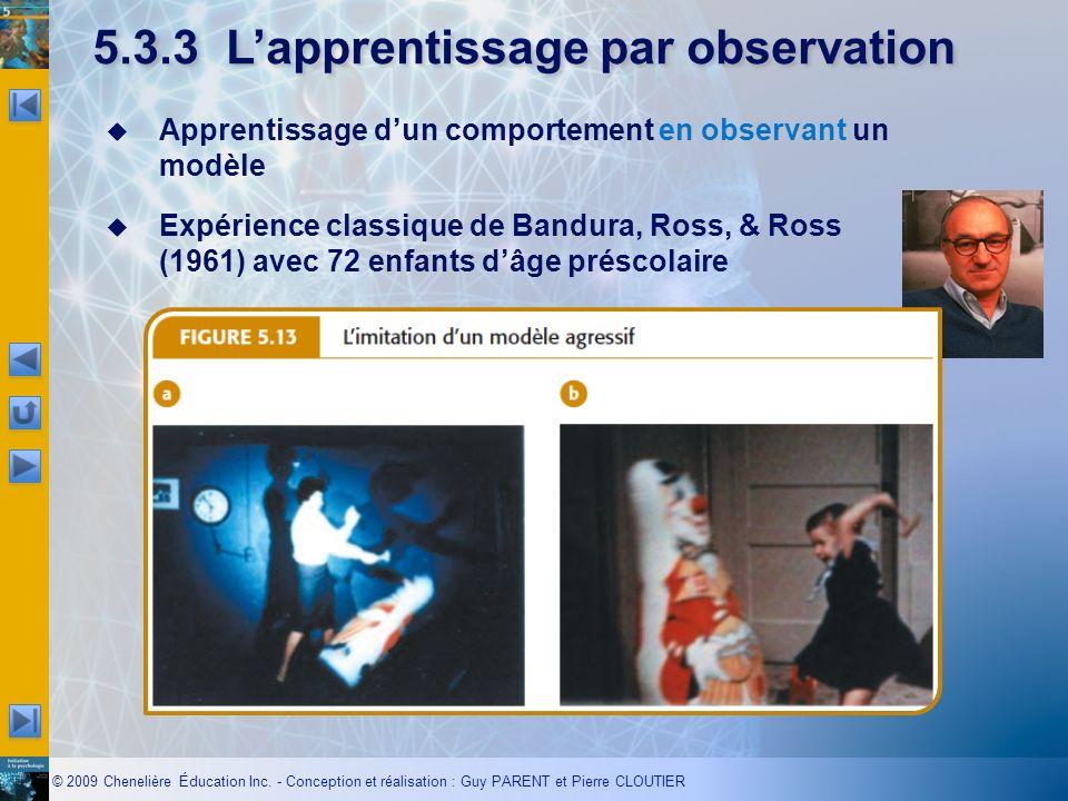 © 2009 Chenelière Éducation Inc. - Conception et réalisation : Guy PARENT et Pierre CLOUTIER 5.3.3Lapprentissage par observation en observant Apprenti