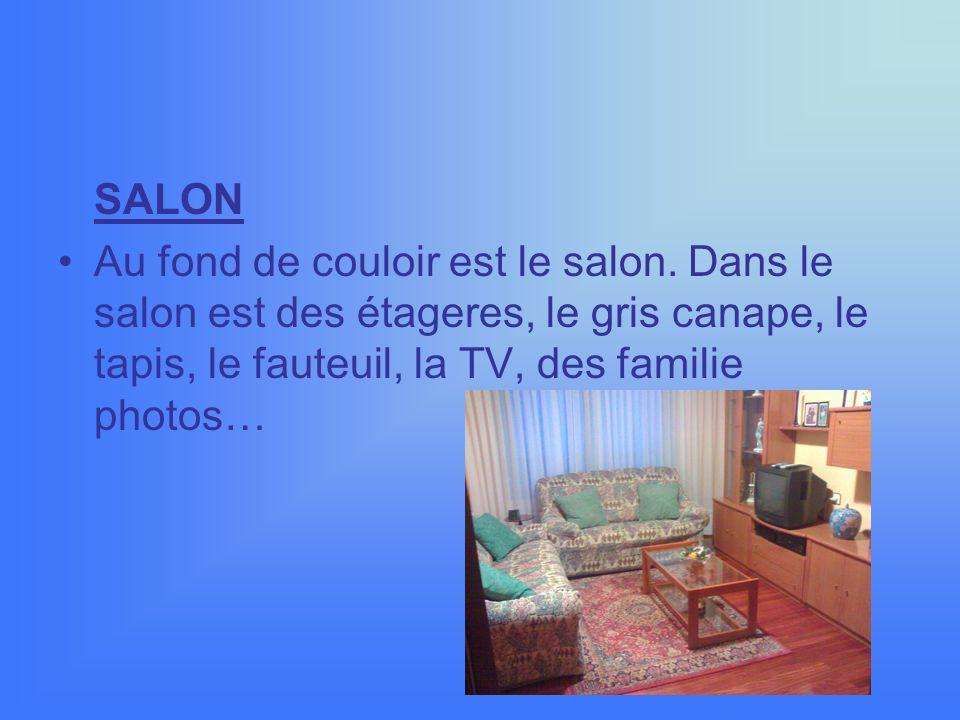 SALON Au fond de couloir est le salon.