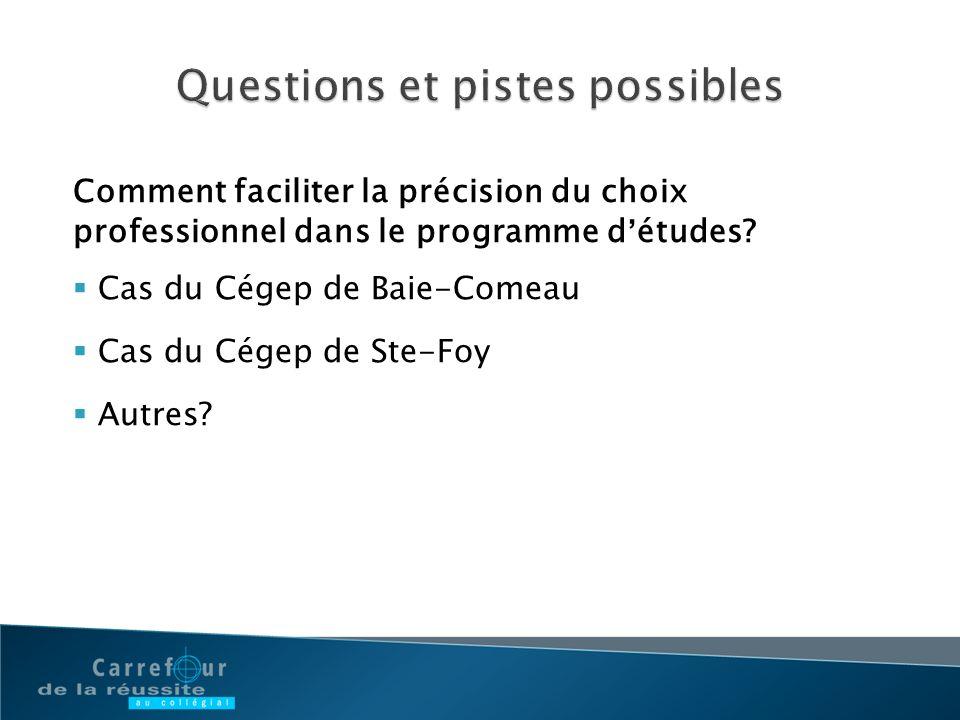 Comment faciliter la précision du choix professionnel dans le programme détudes? Cas du Cégep de Baie-Comeau Cas du Cégep de Ste-Foy Autres?
