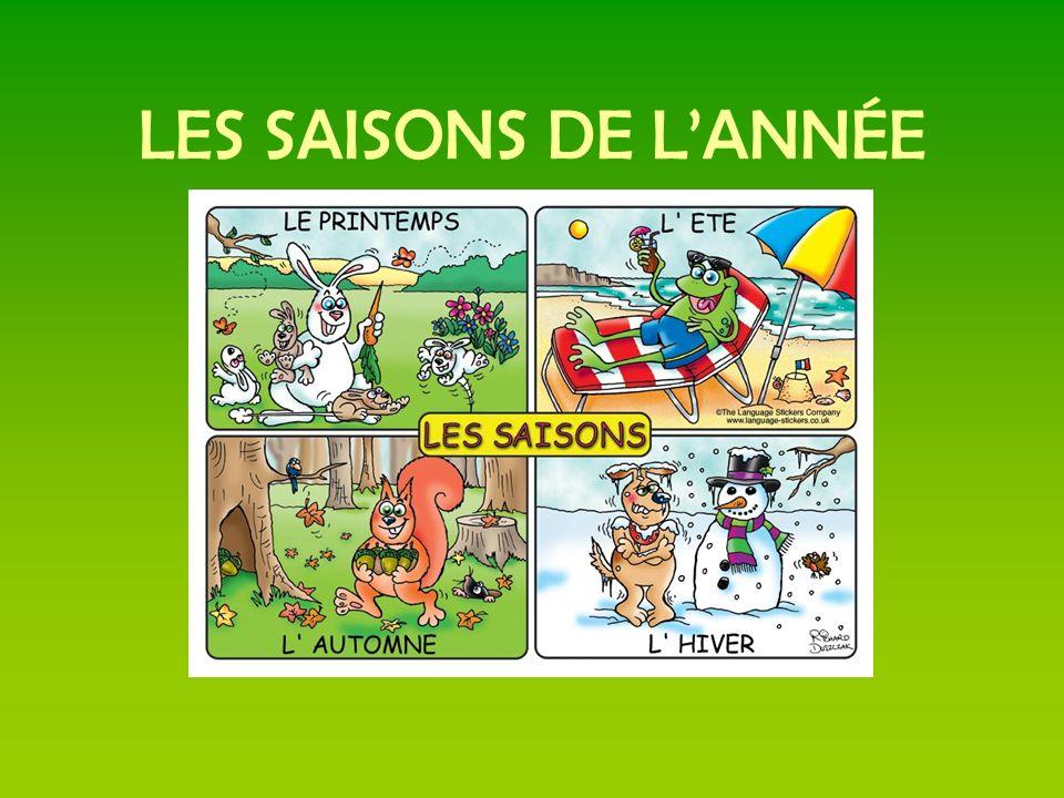 LES SAISONS DE LANNÉE