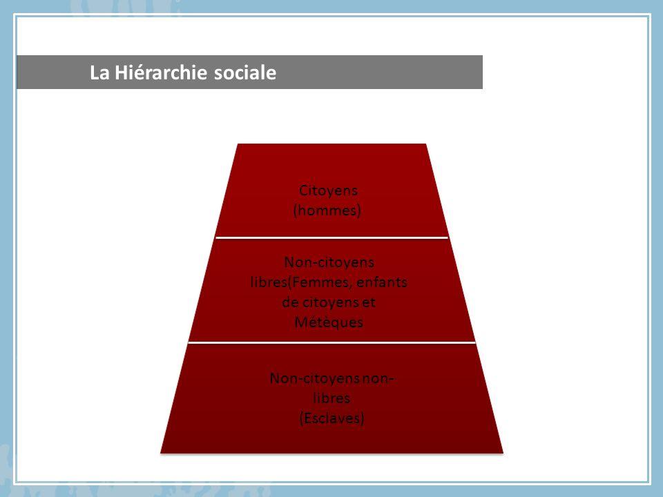 La Hiérarchie sociale Citoyens (hommes) Non-citoyens libres(Femmes, enfants de citoyens et Métèques Non-citoyens non- libres (Esclaves)