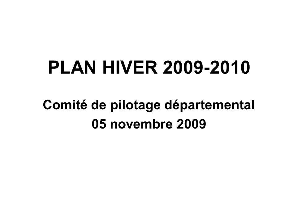 PLAN HIVER 2009-2010 Comité de pilotage départemental 05 novembre 2009