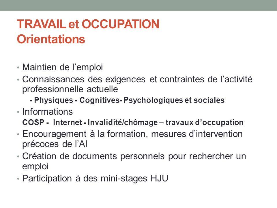 TRAVAIL et OCCUPATION Orientations Maintien de lemploi Connaissances des exigences et contraintes de lactivité professionnelle actuelle - Physiques -
