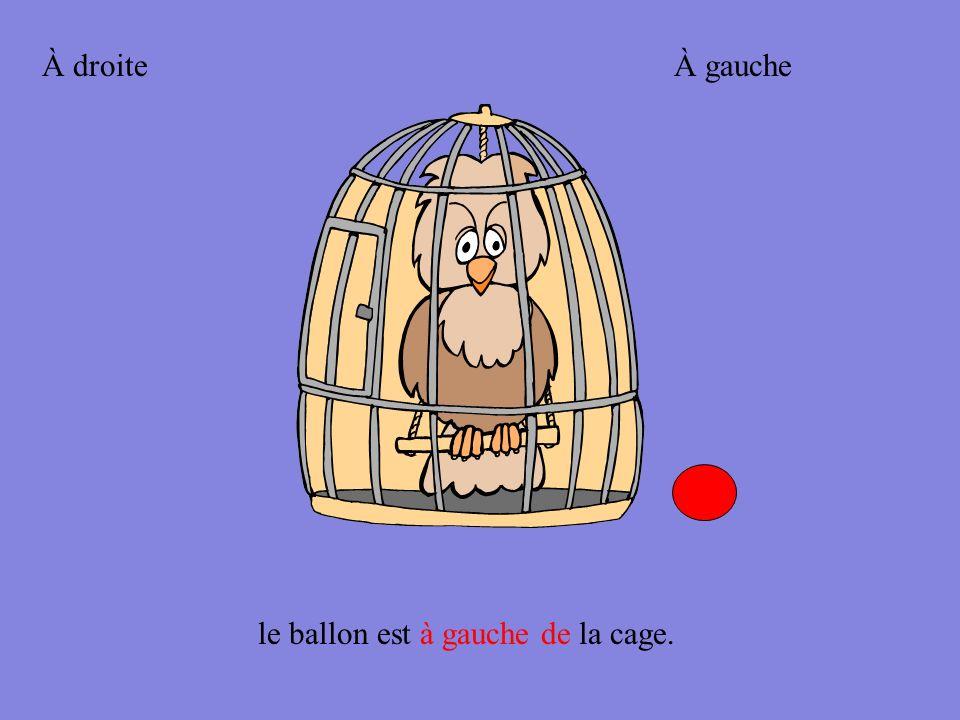 le ballon est en face de la cage.