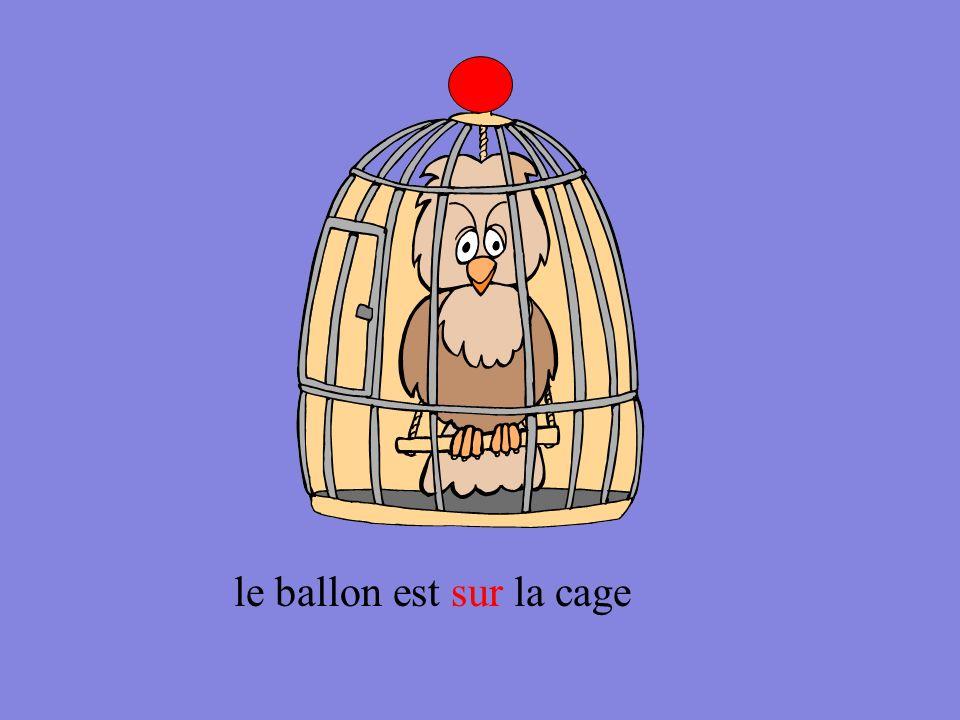 le ballon est sur la cage