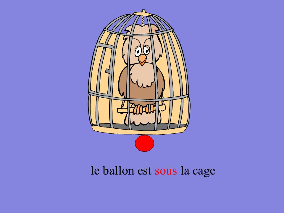 le ballon est près de la cage