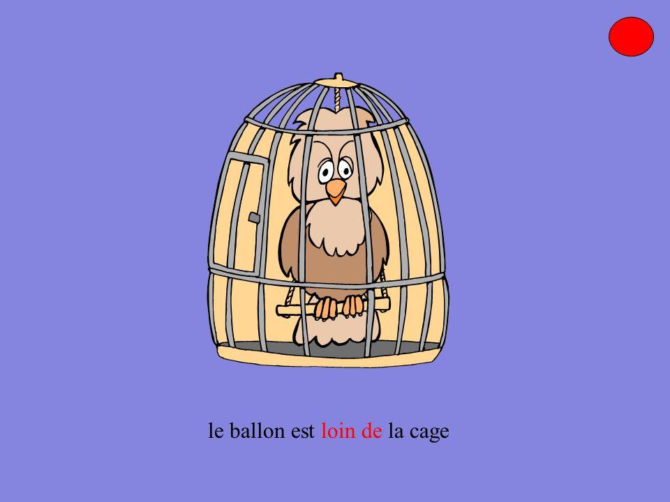 le ballon est dans le coin de la cage.