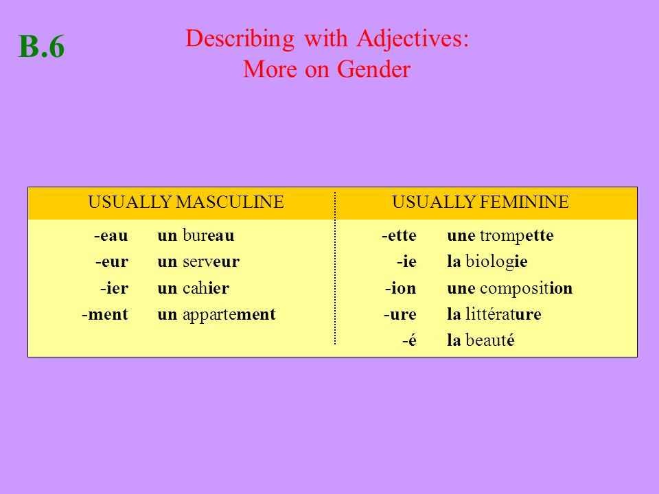 Describing with Adjectives: More on Gender -eauun bureau-ette une trompette -eurun serveur -ie la biologie -ierun cahier -ionune composition -mentun appartement-urela littérature -éla beauté B.6 USUALLY MASCULINEUSUALLY FEMININE