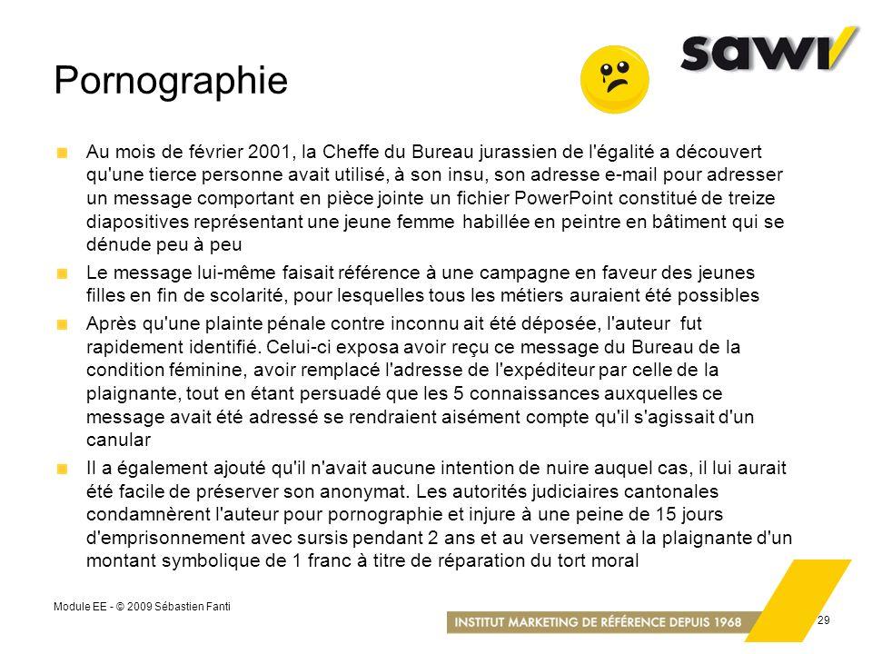 Module EE - © 2009 Sébastien Fanti 29 Pornographie Au mois de février 2001, la Cheffe du Bureau jurassien de l'égalité a découvert qu'une tierce perso