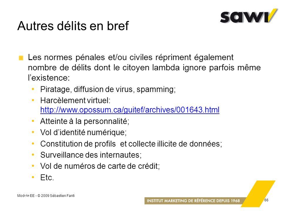 Module EE - © 2009 Sébastien Fanti 66 Autres délits en bref Les normes pénales et/ou civiles répriment également nombre de délits dont le citoyen lamb