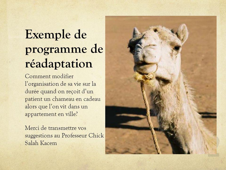 Exemple de programme de réadaptation Comment modifier lorganisation de sa vie sur la durée quand on reçoit dun patient un chameau en cadeau alors que