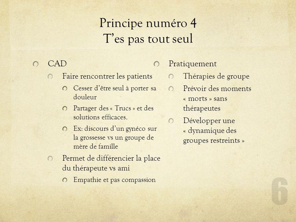 Principe numéro 4 Tes pas tout seul CAD Faire rencontrer les patients Cesser dêtre seul à porter sa douleur Partager des « Trucs » et des solutions ef
