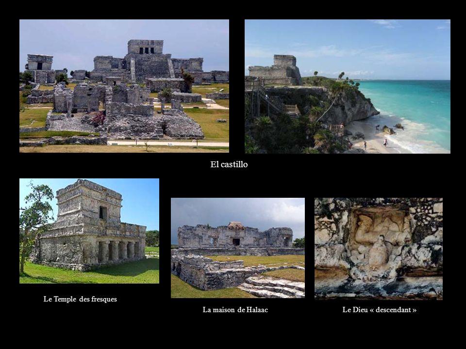 COBA Coba est un site archéologique Maya situé à 106 km de Playa del Carmen lentrée ( 37 pesos ) est inclue dans votre séjour Cest le site le plus important de la péninsule du Yucatan.
