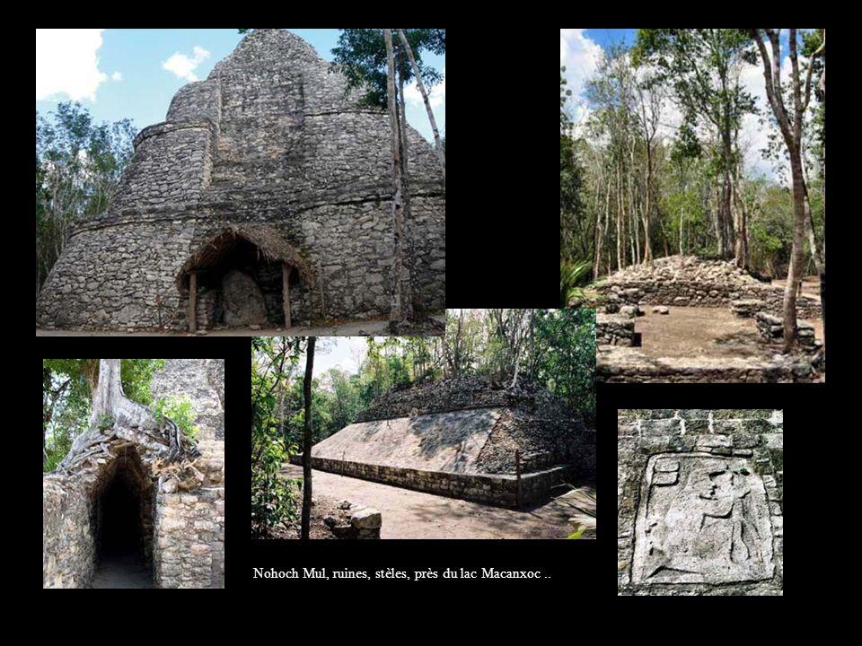 Nohoch Mul, ruines, stèles, près du lac Macanxoc..