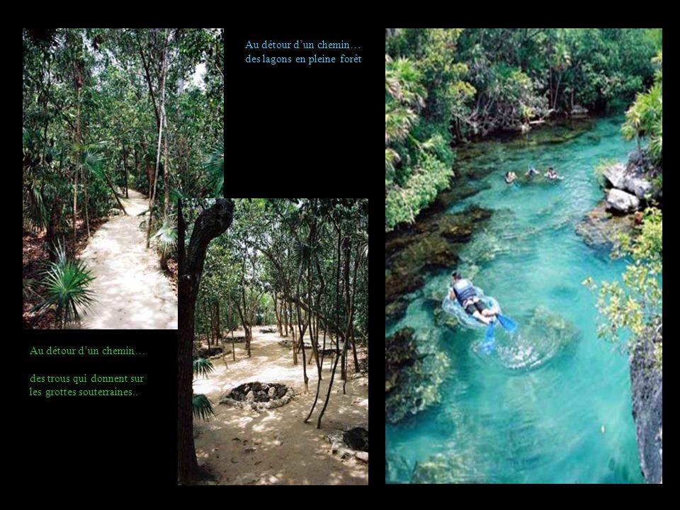 Au détour dun chemin… des trous qui donnent sur les grottes souterraines.. Au détour dun chemin… des lagons en pleine forêt