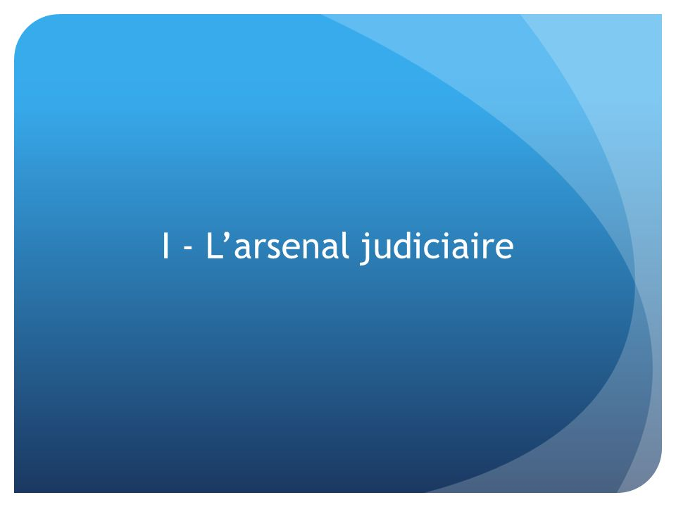I - Larsenal judiciaire
