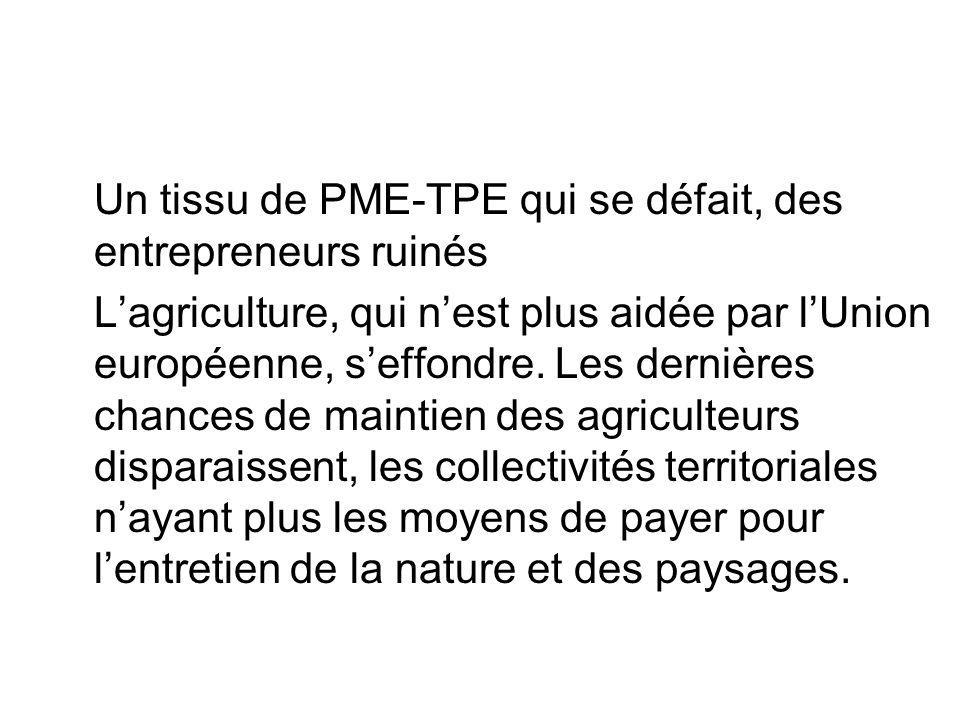 Un tissu de PME-TPE qui se défait, des entrepreneurs ruinés Lagriculture, qui nest plus aidée par lUnion européenne, seffondre. Les dernières chances