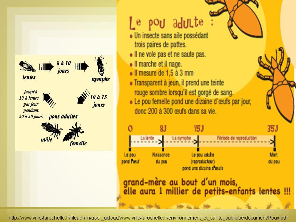 http://www.ville-larochelle.fr/fileadmin/user_upload/www.ville-larochelle.fr/environnement_et_sante_pu