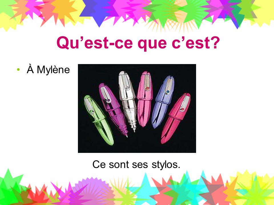 Quest-ce que cest? À Mylène Ce sont ses stylos.