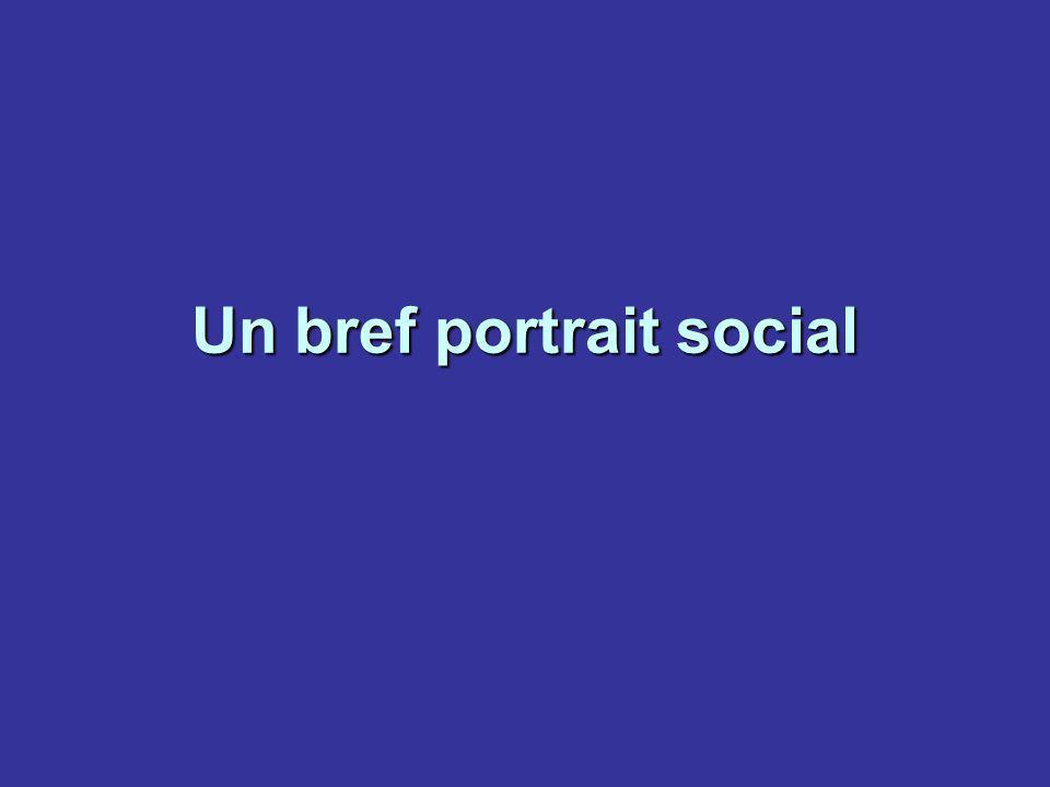 Un bref portrait social